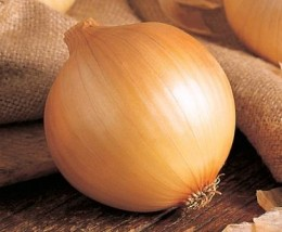 Semente Cebola Híbrida Perfecta (Topseed Premium) - 100.000 sementes