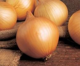 Semente Cebola BR 23 (Topseed Premium) - 500 gramas