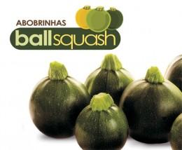 Semente Abobrinha Híbrida Ballsquash Eight Ball (Topseed Premium) - 250 sementes