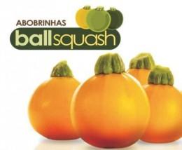 Semente Abobrinha Híbrida Ballsquash One Ball (Topseed Premium) - 250 sementes