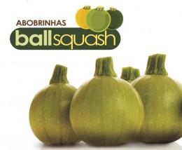 Semente Abobrinha Híbrida Ballsquash Cue Ball (Topseed Premium) - 250 sementes